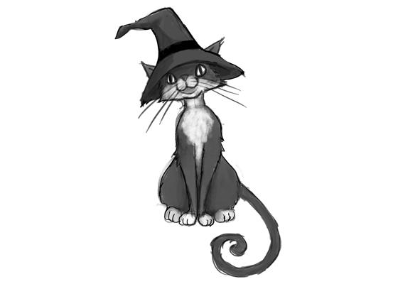 cat05_WEB11