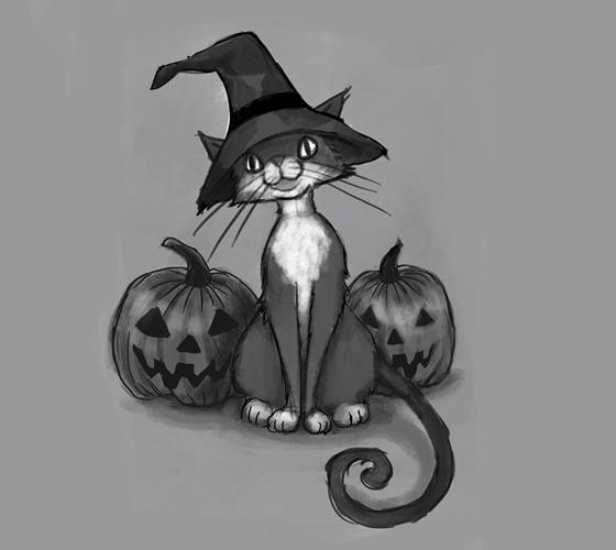 cat07_WEB