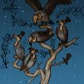 the_story_elves_vultures_color_thumb